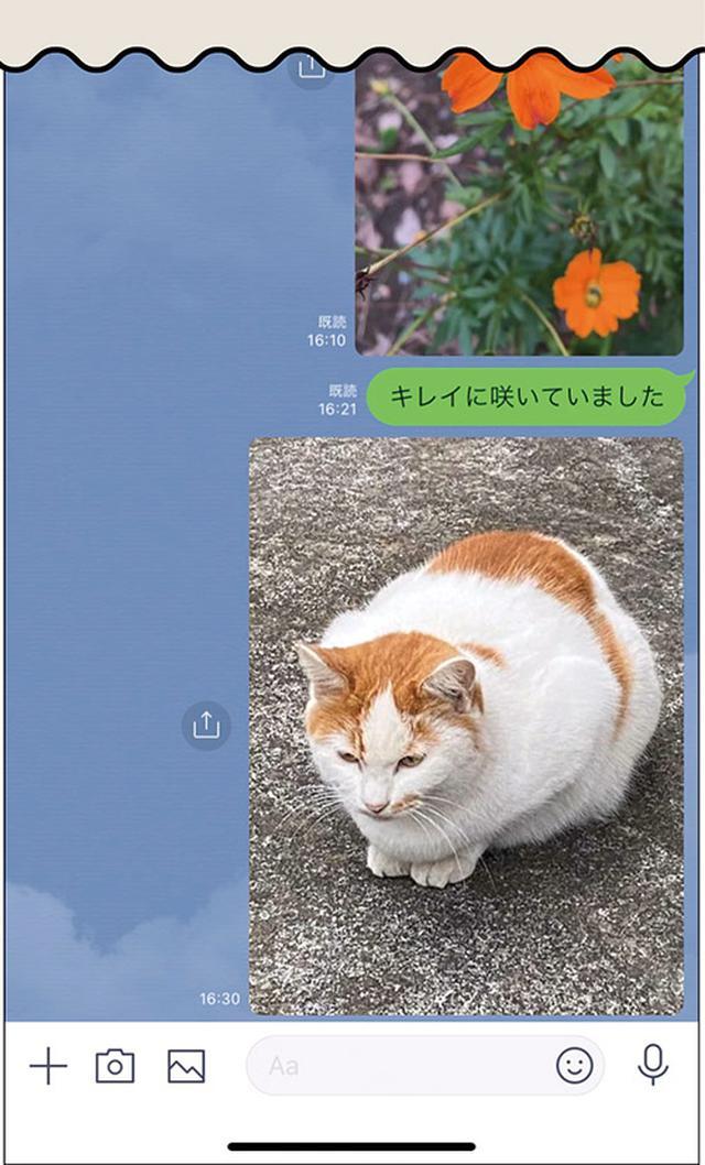 画像8: 一番簡単で手軽な 写真の送り方