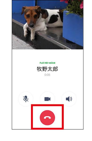 画像2: 【LINE通話の仕方】音声通話・ビデオ通話をする方法 Wi-Fi接続時なら完全無料!