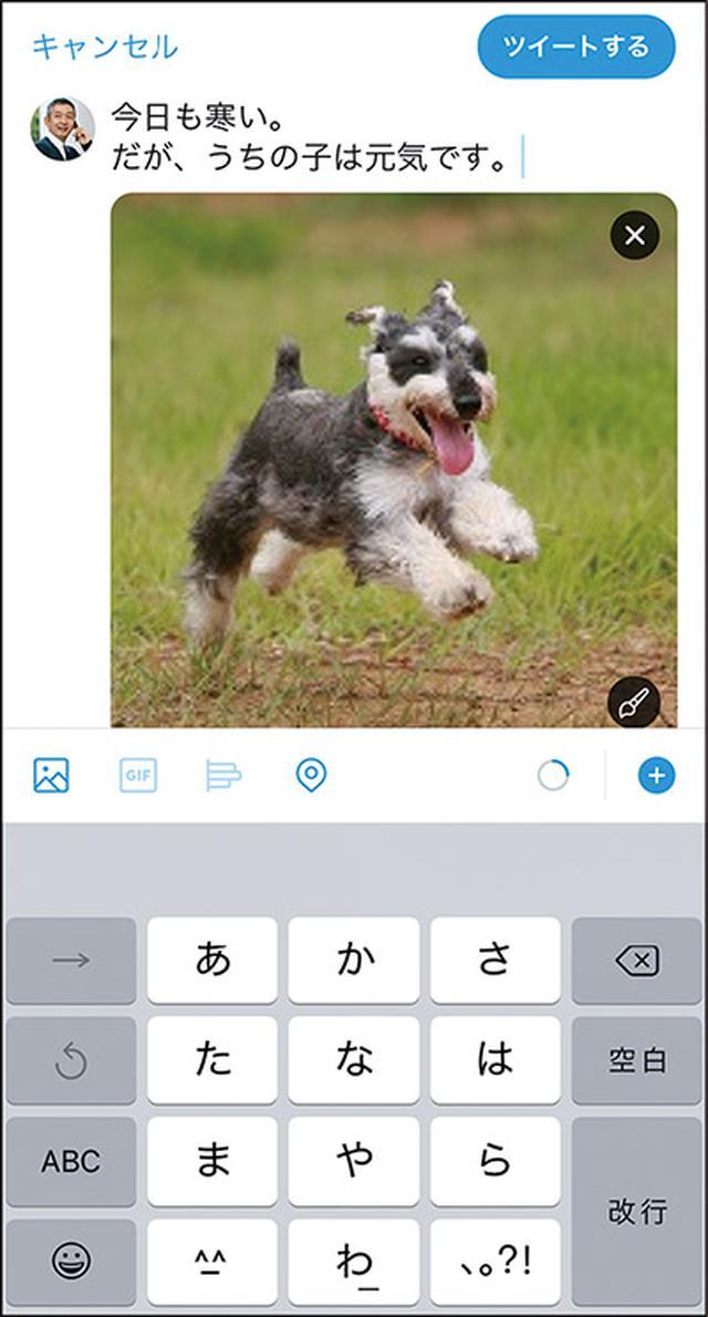 画像2: 【ツイッターとは①】Twitterの始め方を初心者向けに解説