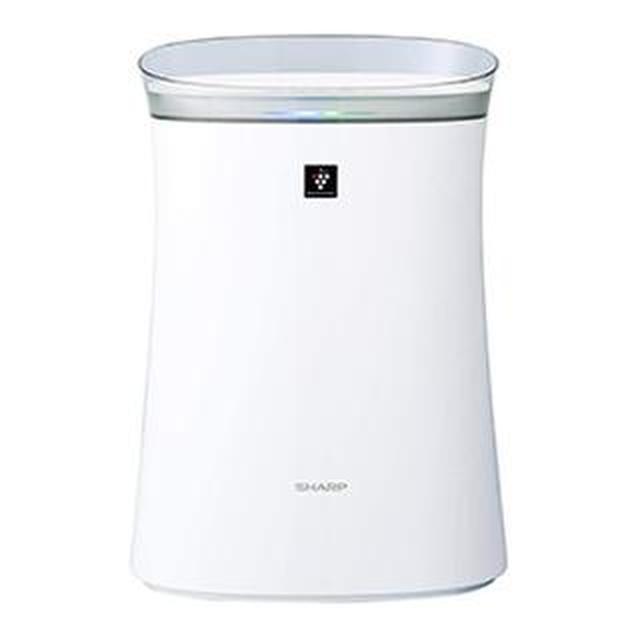 画像1: 【空気清浄機の選び方】加湿機能なし・メンテナンスが楽「空気清浄専用タイプ」に再注目
