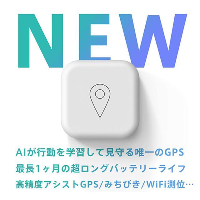 画像2: GPS BoT (ビーサイズ)