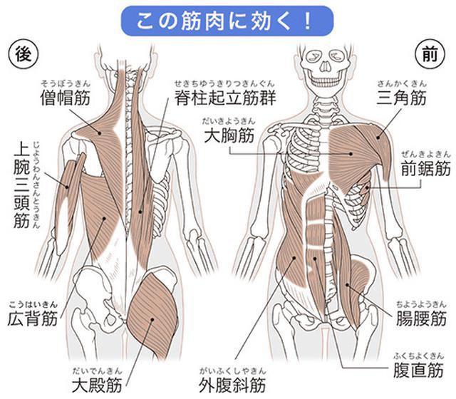 画像2: 自律神経が整う 「腸ストレッチ」のやり方