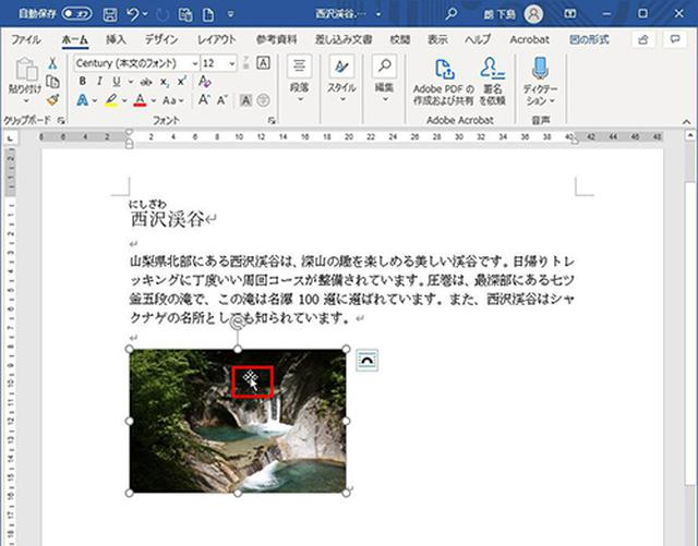画像4: 挿入した写真のサイズと配置を整える