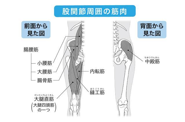 画像: 関節の音や違和感などが早期のチェックポイント