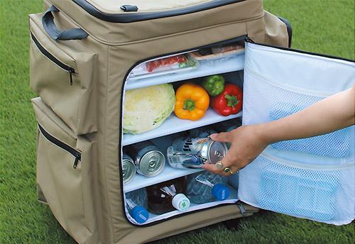 画像: 取り外し式の棚板で庫内を整理できる。棚板は強化ボードを内蔵しているので、食材を載せても安定している。