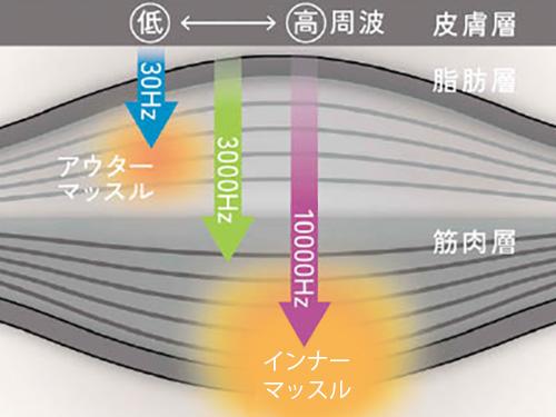 画像: 低周波はアウターマッスルに、高周波はインナーマッスルに刺激を与える。シートサイズは340ミリ×360ミリ。