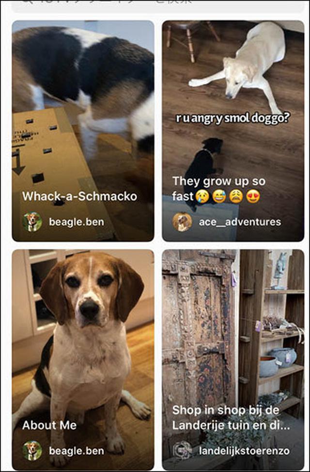 画像3: 【SNSのプロフィール画像】LINEやTwitterに掲載する顔写真を編集!加工アプリでおすすめは「Snapchat」