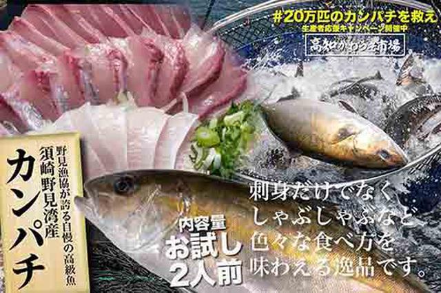 画像: 2人前から、6~8人前、12~16人前まで、ほしい分だけ購入できます。 kochi-kawauso.com