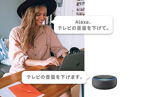 画像: AmazonのAlexaやGoogleアシスタントに対応しており、手持ちのスマートスピーカーと連係し、音声操作することもできる。