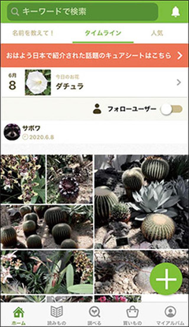 画像1: 花の名前がわかる! 植物がテーマのSNS
