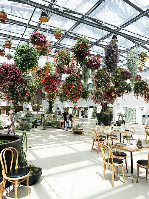 画像: HANA・BIYORI館内は、日本最大級の300を超えるフラワーシャンデリアで彩られている
