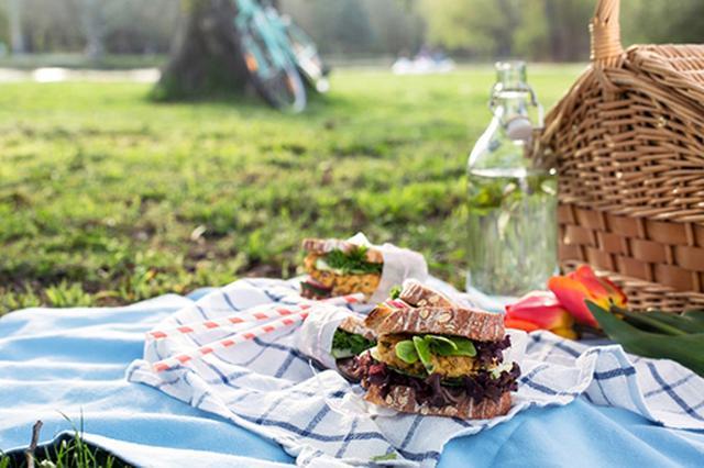 画像: ⑤ピクニックを満喫