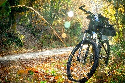 画像: マウンテンバイク pixabay.com