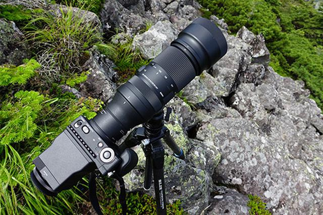 画像: SIGMA 100-400mm F5-6.3 DG DN OS | ContemporaryにカメラボディSIGMA fp、2倍のエクステンダーなどを装備しても約2.4kgでした。