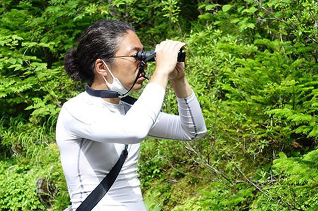 画像: 声のする方向を双眼鏡で探してナキウサギを発見します。いきなりカメラで探すよりも、まずは双眼鏡が楽です。(写真撮影:西川藍)
