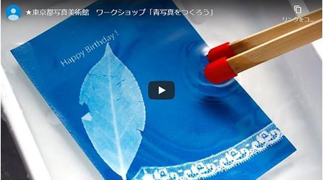 画像: 東京都写真美術館 「青写真」をつくってみよう