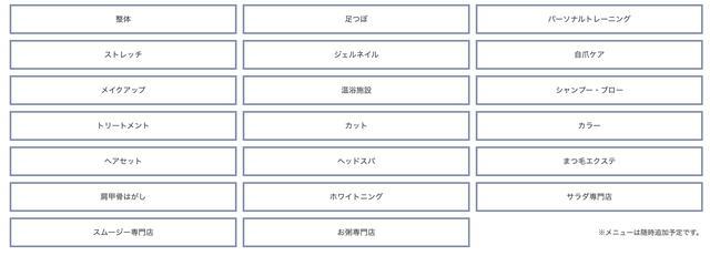 画像: スタンダード定額プランのメニュー salt.byk.tokyo