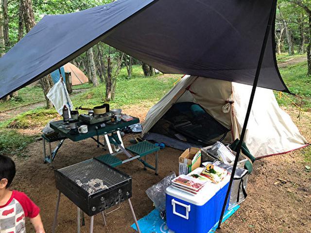 画像: キャンプサイトの様子