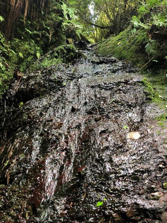 画像: 途中で見つけた滝の水は冷たくて気持ちよかった!