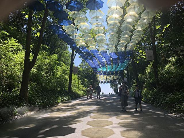 画像: 梅雨のイベントである「ムーミン谷とアンブレラ」 筆者撮影