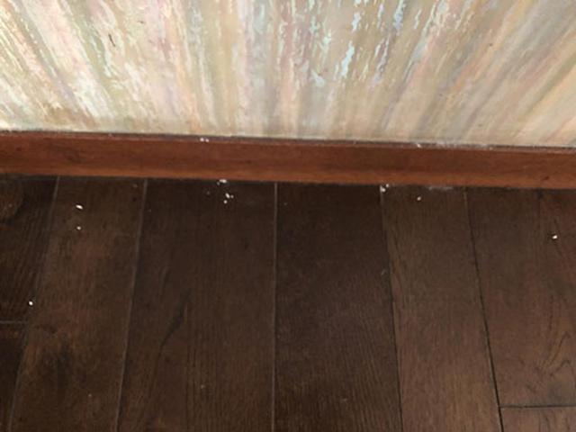 画像: 隅っこに数カ所、小さな塊が残っている