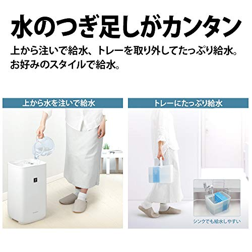 画像4: 【加湿器おすすめ】ウイルス・風邪対策には乾燥予防!本格的な冬を迎える前に用意しよう(2020年最新版)