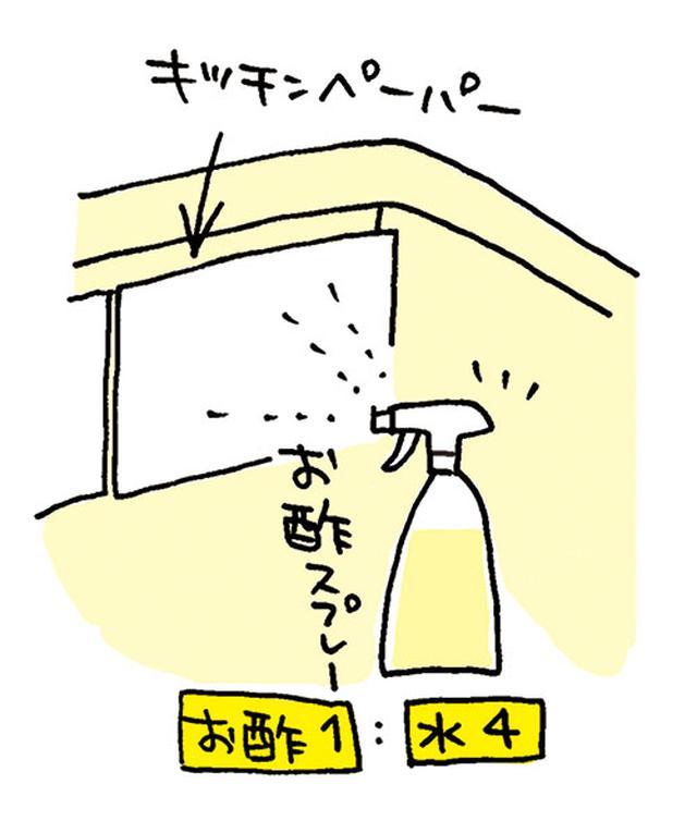 画像: お酢スプレーは、酢1:水4の割合で。 イラスト/すぎうらゆう
