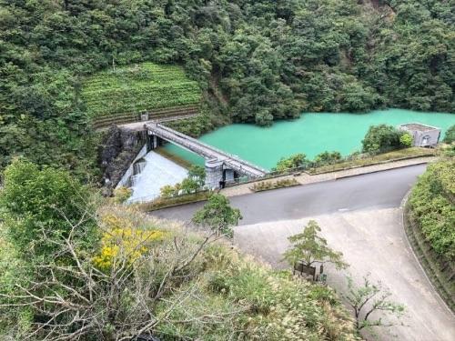 画像: 真緑の池