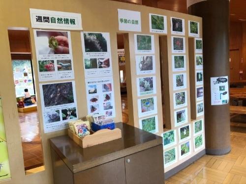画像: 自然や虫のこまかい情報が知れるパークセンター。