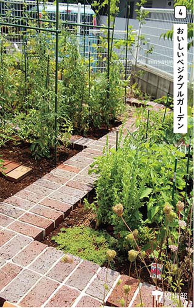 画像4: 使う? 楽しむ?日々の暮らしを素敵に彩る庭