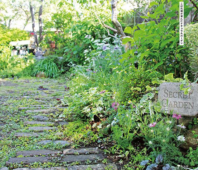 画像: 小さいからこそ自分らしい個性的な空間に メインの庭①
