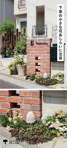 画像5: 一年草で門扉や門柱を彩れば効果的なフォーカルポイントに