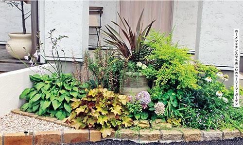 画像: 大小の葉とカラーリーフを多彩に組み合わせてリゾート感たっぷりに。つぼ型の鉢に剣葉のニューサイランを植えて高さを出しています。