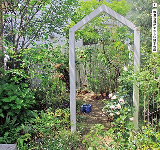 画像1: 使う? 楽しむ?日々の暮らしを素敵に彩る庭