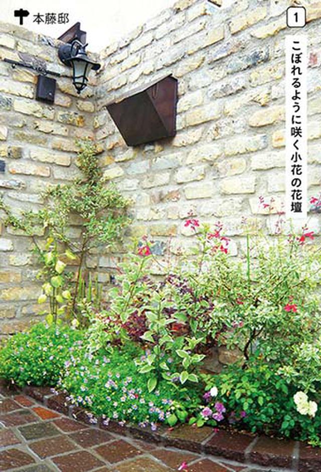 画像1: 花壇とコンテナを活用しておしゃれに演出