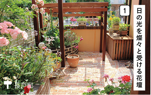 画像1: 花壇やコンテナでセンスのよい草花づかい