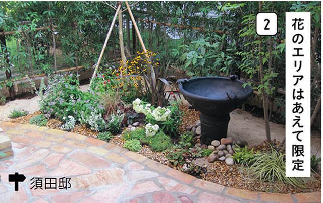画像2: 花壇やコンテナでセンスのよい草花づかい