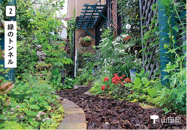 画像2: 使う? 楽しむ?日々の暮らしを素敵に彩る庭