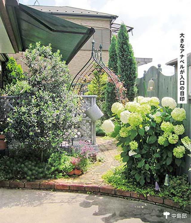画像2: 無造作な植栽の中にフォーカルポイントを置く