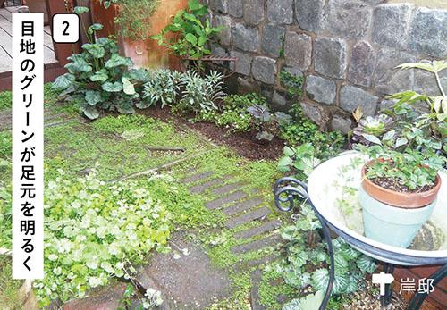 画像2: 色使い&高低差をつけるのがコツ 日陰を生かした植栽の演出例
