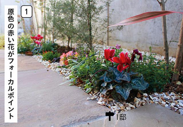 画像1: 色使い&高低差をつけるのがコツ 日陰を生かした植栽の演出例