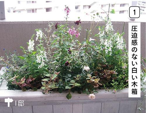 """画像1: コンテナの活用で""""地面""""はつくれる ベランダの柵際に花壇を設けてたっぷりの草花で演出しましょう!"""
