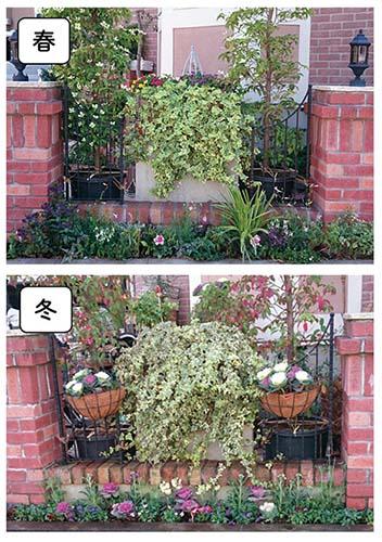 画像: 植え替えを行ったフロントガーデンの花壇。季節の彩りは、近隣の人の目も引いています。