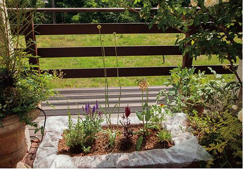 画像1: 草花の配置について