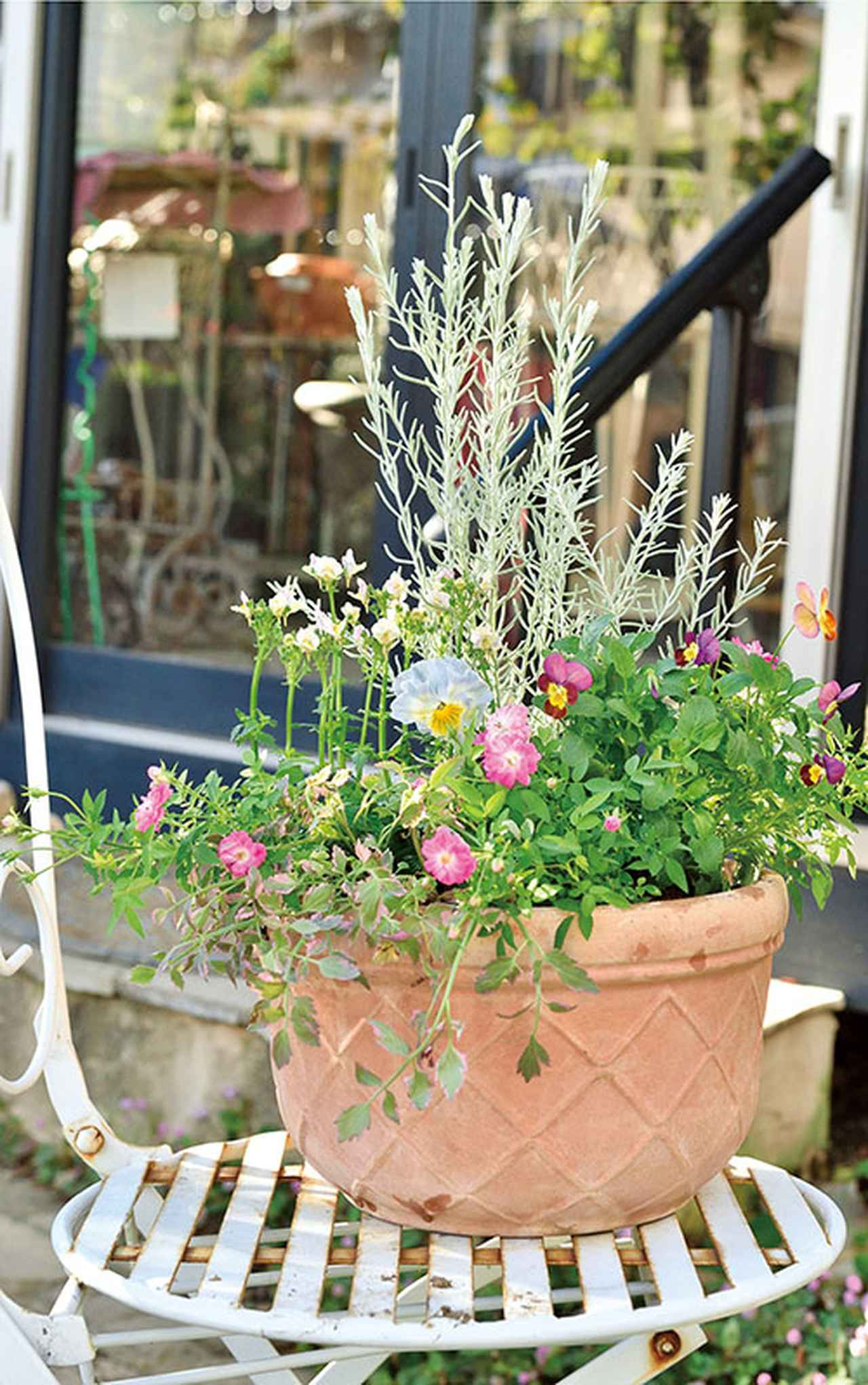 画像: 直接鉢を置くよりも、イスや花台などにのせて高さをつけるのがおすすめ。