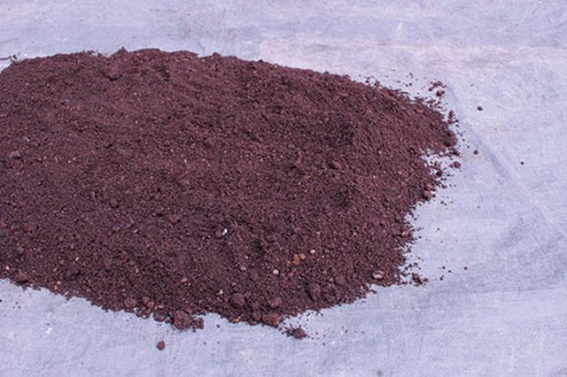 画像: 古い土を再利用する場合は「日光消毒」を