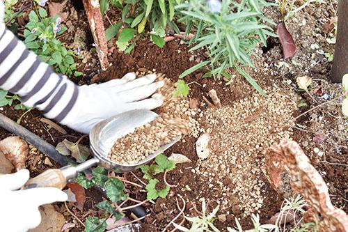 画像: ④腐葉土と赤玉土を混ぜてかける
