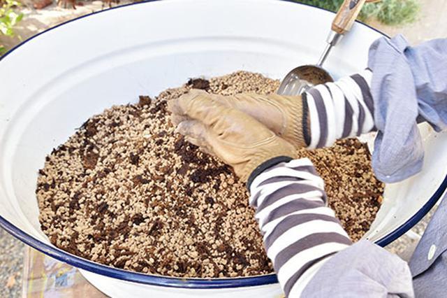画像: ②腐葉土が固まっていればもみほぐす