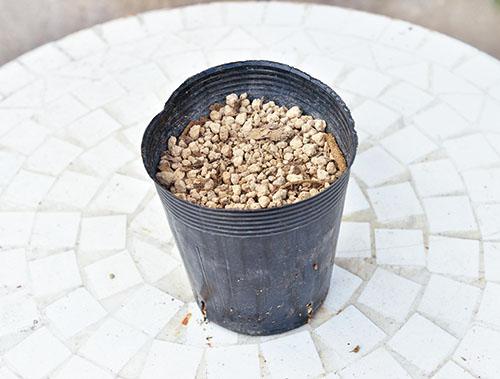 画像: ①ポットに土を入れる