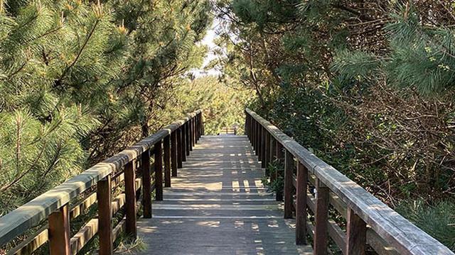 画像: 歩きながら撮影するときも、早歩きをせず、「ゆっくり」を意識する。